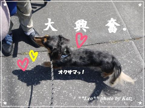 20120908 Leo (2)