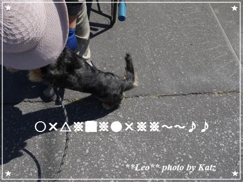 20120908 Leo (3)