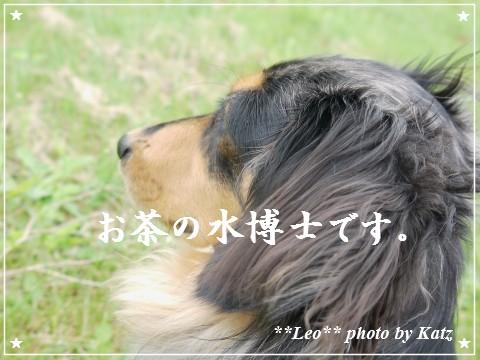 20120916 Leo (1)