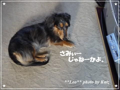 20121027 Leo (1)