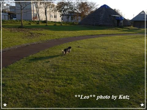 20121027 Leo (9)
