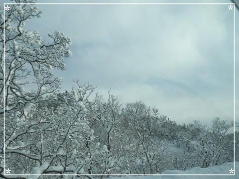 20121208 旭川 (3)