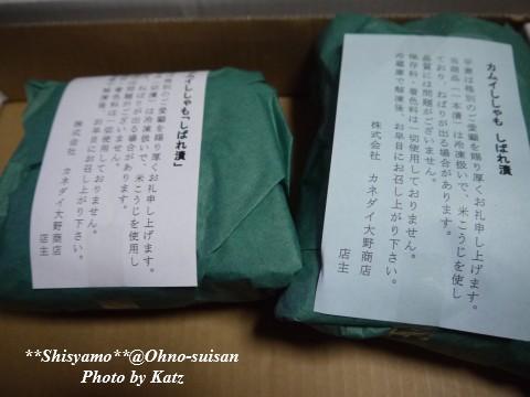 2012むかわししゃも (5)