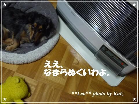 20121120 Leo (3)