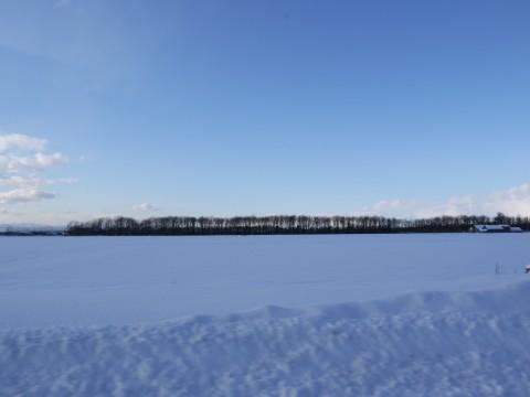 20121223風景 (2)