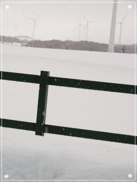 20130129風景