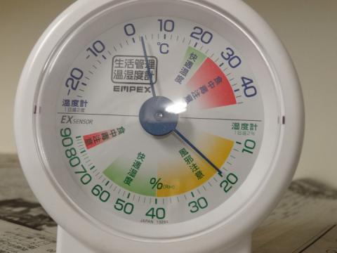 0221 越冬トンボ (4)