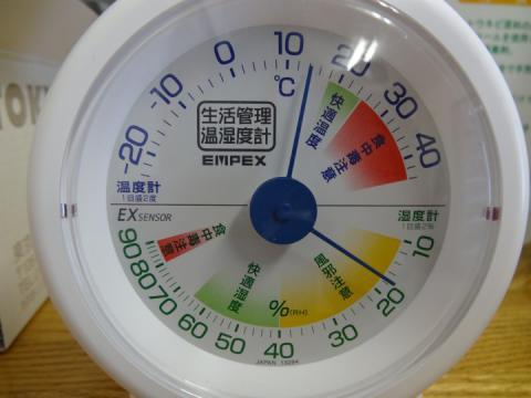 0221 越冬トンボ (21)