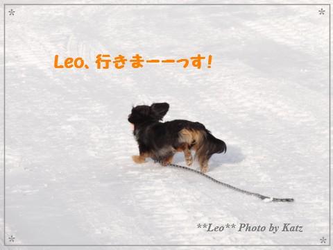 20130309 Leo (17)