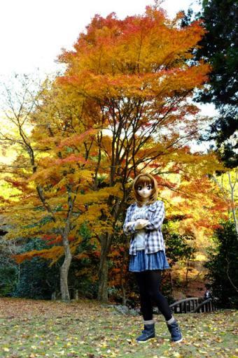 3_10_20121209173613.jpg
