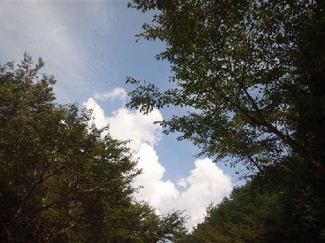 IMG_20120922_130248.jpg