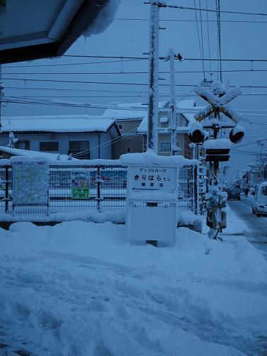 大着雪の朝に (2)