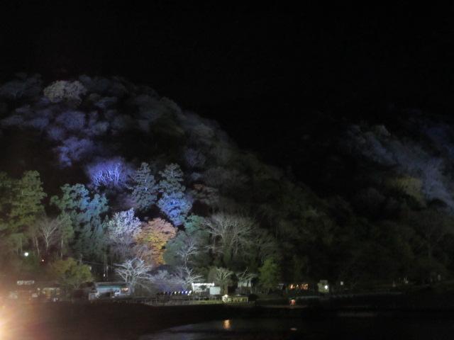 嵐山花灯路2012-6