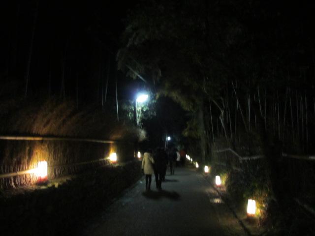 嵐山花灯路2012 竹林の小径1