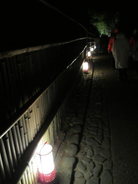 嵐山花灯路2012 竹林の小径3