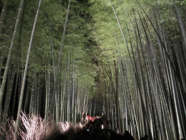 嵐山花灯路2012 竹林の小径4