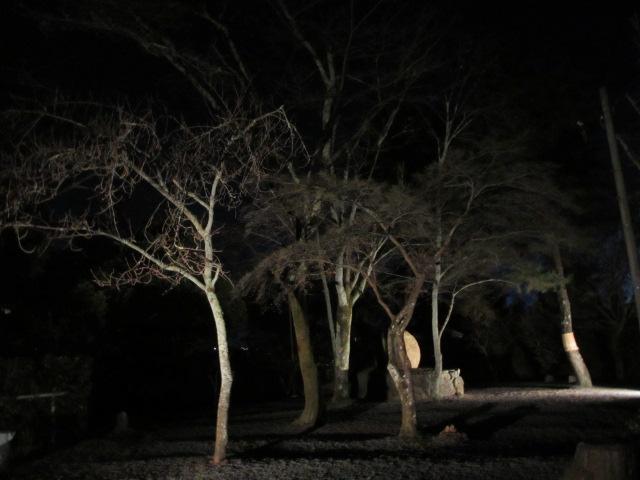 嵐山花灯路2012-18