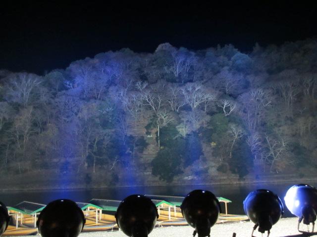 嵐山花灯路2012-20