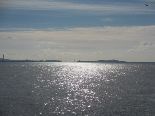 日間賀島 年末年始旅行17