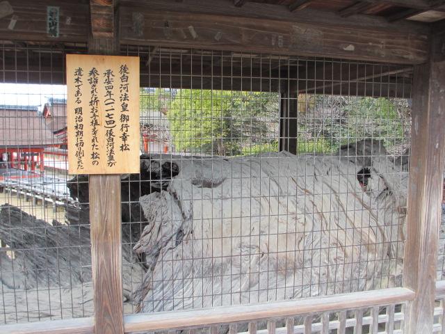 厳島神社 五重塔へ2