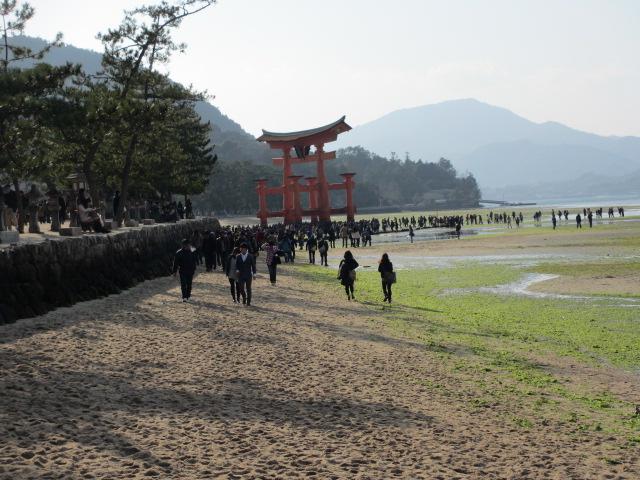 厳島神社 大鳥居1