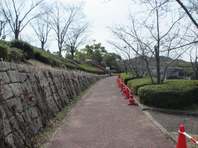 神戸総合運動公園3