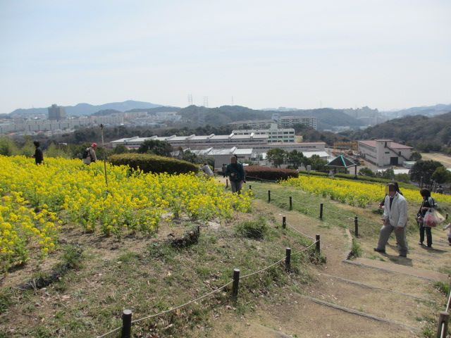 神戸総合運動公園9