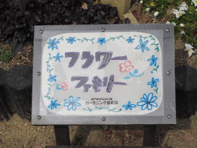 神戸総合運動公園23