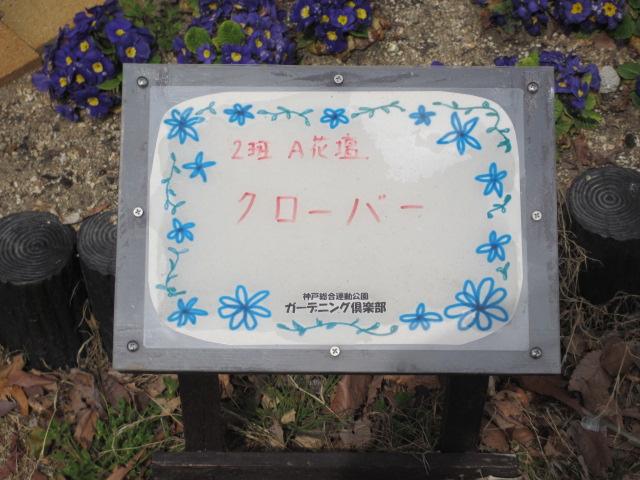 神戸総合運動公園26