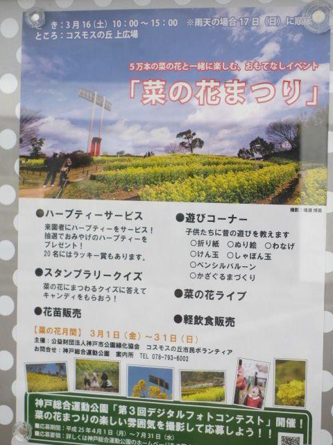 神戸総合運動公園46