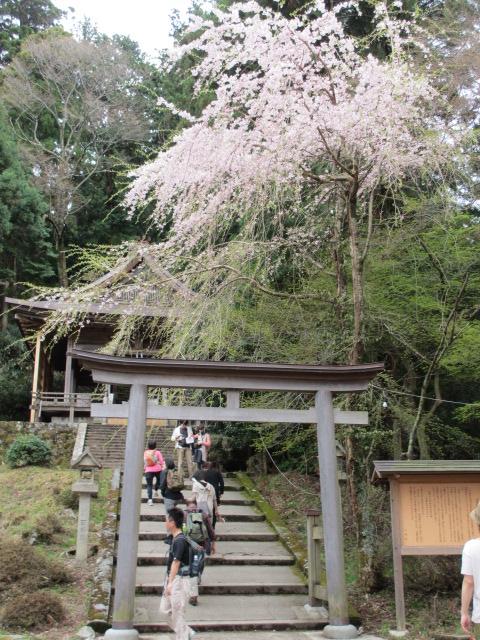 吉野水分神社~義経の隠れ塔(金峯神社)