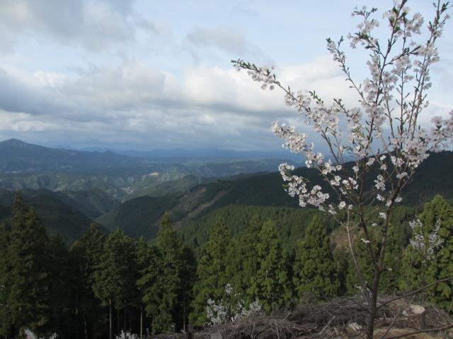 吉野水分神社~義経の隠れ塔(金峯神社)4