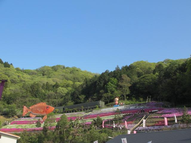 芝桜の小道(昼)