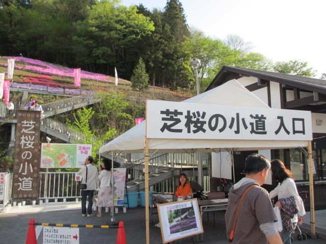芝桜の小道(昼)2