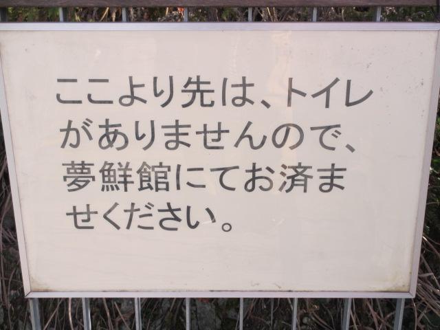 芝桜の小道(昼)4