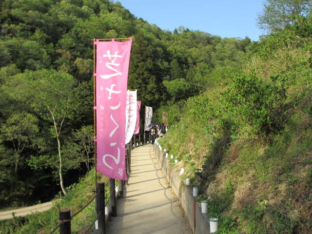 芝桜の小道(昼)23