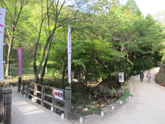 芝桜の小道(昼)24