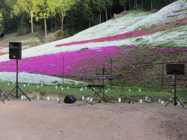 芝桜の小道(昼)32