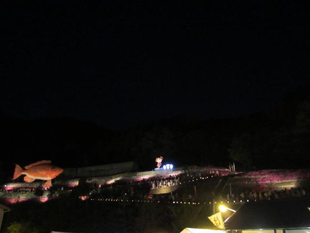 芝桜の小道(夜)1