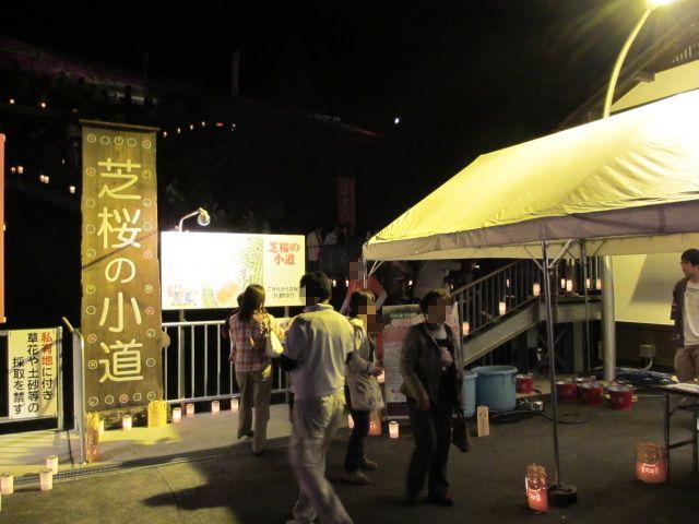 芝桜の小道(夜)2