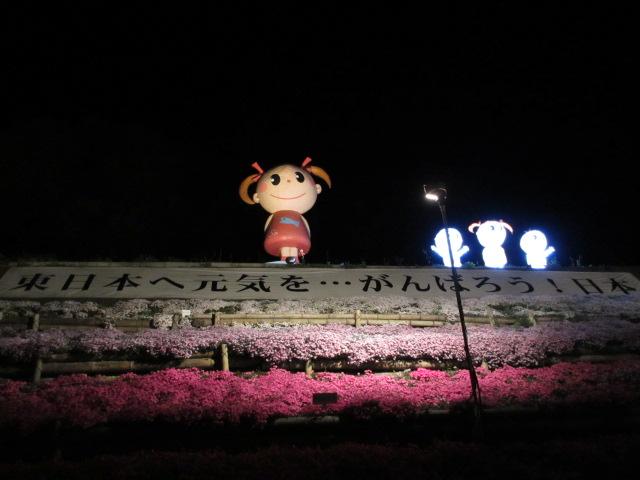 芝桜の小道(夜)8