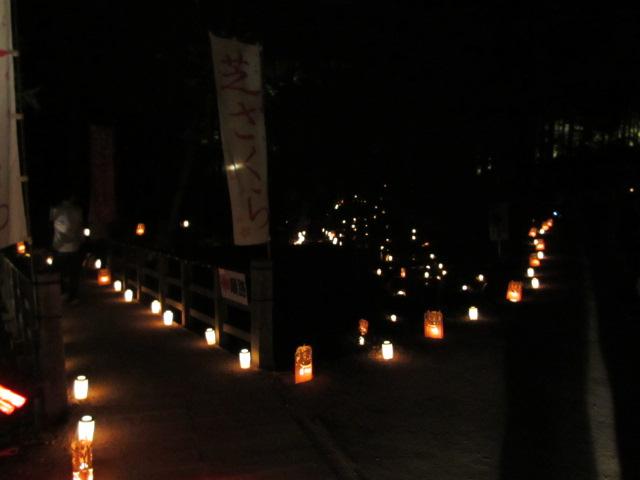 芝桜の小道(夜)13
