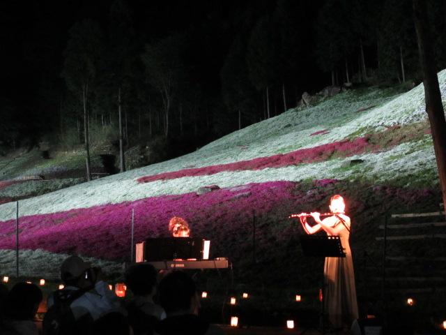 芝桜の小道(夜)20