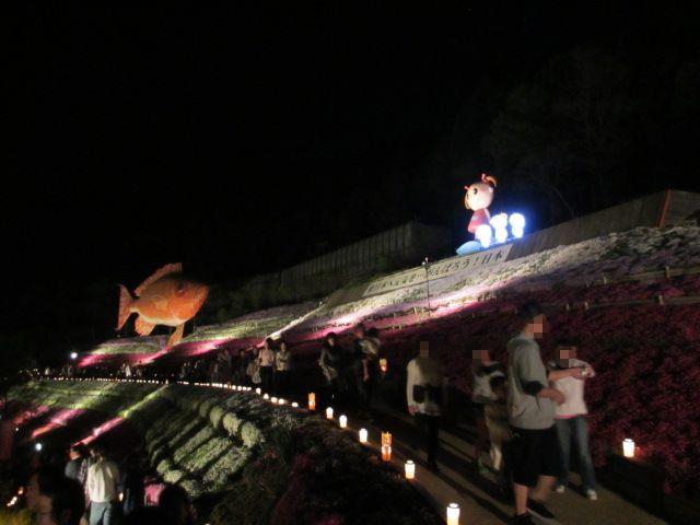 芝桜の小道(夜)7-2