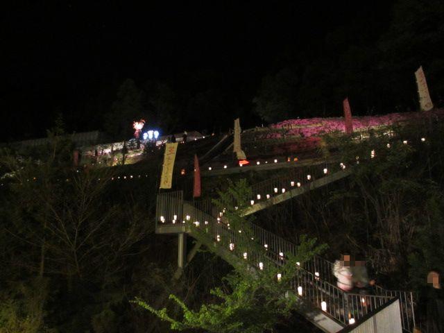 芝桜の小道(夜)3