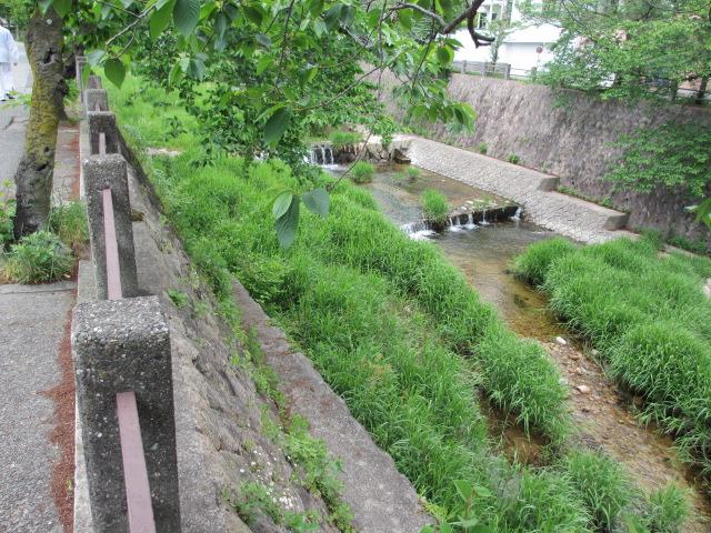 六甲山2012春(その1 芦屋川駅~風吹岩編) 高座の滝まで2