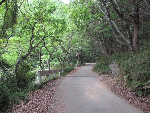 六甲山2012春(その1 芦屋川駅~風吹岩編) 高座の滝まで9
