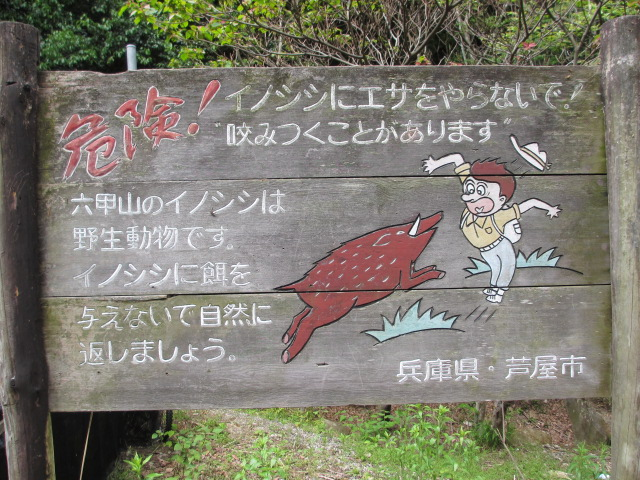 六甲山2012春(その1 芦屋川駅~風吹岩編) 高座の滝まで10