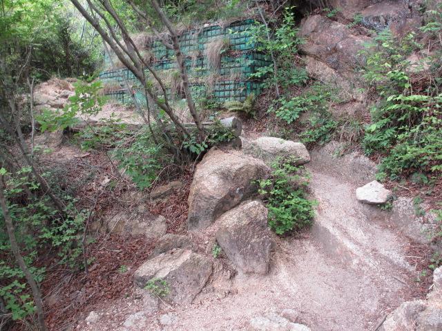 六甲山2012春(その1 芦屋川駅~風吹岩編) ロックガーデン15