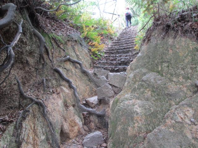 六甲山2012春(その1 芦屋川駅~風吹岩編) ロックガーデン18